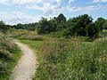 Footpath near Long Lane - geograph.org.uk - 1399014.jpg