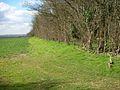 Footpath to Denford - geograph.org.uk - 373572.jpg