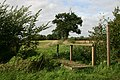 Footpath to Rougham Green - geograph.org.uk - 245472.jpg