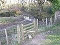 Ford in Decoy Wood - geograph.org.uk - 1261241.jpg