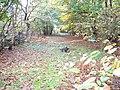 Forgotten track in Kesgrave - geograph.org.uk - 1031477.jpg