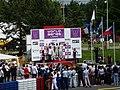 Formula Renault 3.5 Series, 2010 Brno WSR (62).jpg
