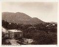 Fotografi från Korfu, Grekland - Hallwylska museet - 104585.tif