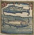 Fotothek df tg 0004439 Astrologie ^ Sternzeichen ^ Kalender.jpg