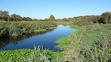 Frays River in Frays Farm Meadows.jpg