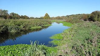 Frays Farm Meadows - Frays River in Frays Farm Meadows
