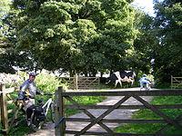 Friden - High Peak Trail - geograph.org.uk - 59337.jpg