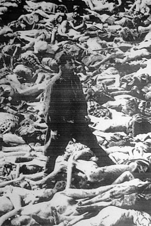 Fritz Klein - Klein surrounded by bodies. The British Army liberating Bergen-Belsen forced German camp personnel to bury the corpses of prisoners.