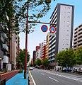 Fukuoka city natnotsudori.jpg