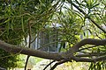 GRACE LEWIS MILLER HOUSE, PALM SPRINGS RIVERSIDE COUNTY CA.jpg