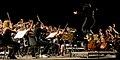 Gaga Symphony Orchestra.jpeg