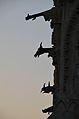 Gargouilles sur la cathédrale de REIMS.jpg