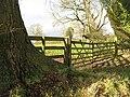 Gate, Ayntree - geograph.org.uk - 1638723.jpg
