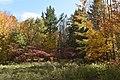 Gatineau Park, October 2018 (43) (44607387314).jpg