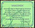 Gedenktafel Grüntaler Str 77a (Gesbr) Anaconda Katrina Scheel 2004.jpg