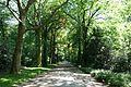 Gelsenkirchen Buer - Schlosspark Berge 04 ies.jpg