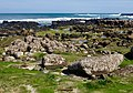 Giant's Causeway (27244326137).jpg