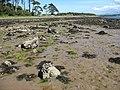 Glacial deposits exposed at low tide. - geograph.org.uk - 524825.jpg