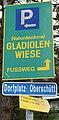 Gladiolenwiese Oberschütt, Villach, Kärnten.jpg