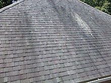 Gloeocapsa Magma on Shingles.jpg