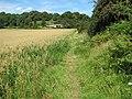 Gloucestershire Way South of Netherhope - geograph.org.uk - 523975.jpg