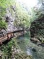 Gorges de Vintgar, Eslovènia (agost 2013) - panoramio (9).jpg