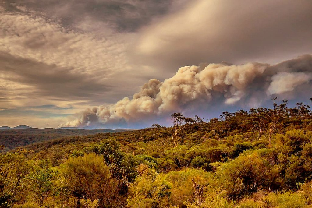 Gospers Mountain Fire