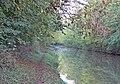 Grand Union Canal and towpath - geograph.org.uk - 597607.jpg