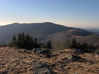 Roan Mountain (Roan Highlands) mountain in United States of America