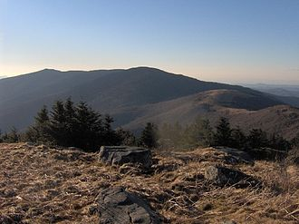 Roan Mountain (Roan Highlands) - Roan Mountain, looking northwest from Grassy Ridge Bald