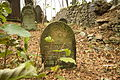 Gravestones at Jewish Cemetery in Dřevíkov, Chrudim District 28.JPG
