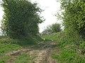 Green Lane Towards Driffield - geograph.org.uk - 1271135.jpg