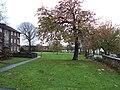Green space, Wallasey Village - DSC04597.JPG
