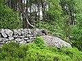 Gritstone boulder, Pen-Llan-y-gwr - geograph.org.uk - 839445.jpg