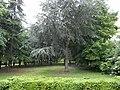 Grounds of the Picpus Cemetery, Paris 75012.jpg