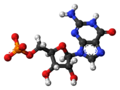 Guanosine-monophosphate-anion-3D-balls.png