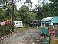 Gypsy caravans, Haldon Forest - geograph.org.uk - 1458681.jpg