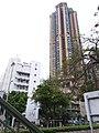 HK 九龍城區 Kowloon City 何文田 Ho Man Tin 培正道 Pui Ching Road June 2019 SSG 12.jpg