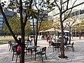 HK 香港南區 Southern District 鋼綫灣 Telegraph Bay 數碼港 Cyberport Jan 2019 SSG 47.jpg