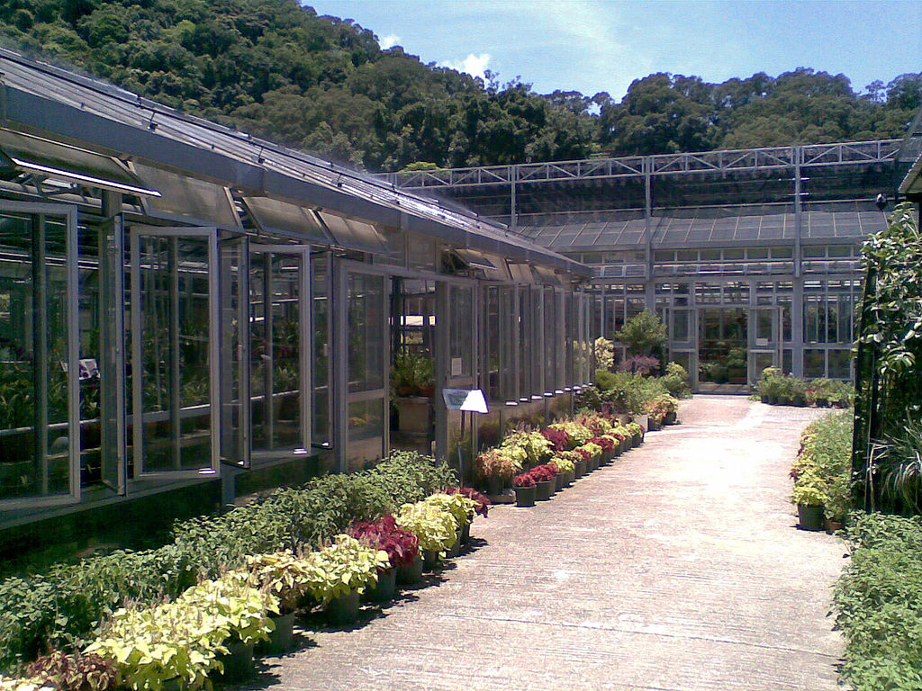 Kadoorie Farm Greenhouses | Chong Fat/CC BY-SA 3.0/Wikimedia Commons