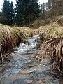 Hahnengraben 2013-03-10 17-22-35.JPG