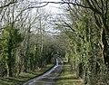 Ham Lane west of Biddestone - geograph.org.uk - 1736662.jpg
