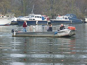Hammerton's Ferry - Image: Hammerton's Ferry midriver