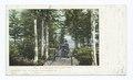 Hand Cart Carry, Adirondacks, N. Y (NYPL b12647398-63054).tiff