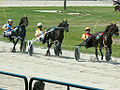 Harness racing 969996243.jpg
