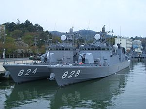 Hayabusa and Umitaka.jpg