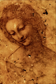 Head of Leda - Leonardo da Vinci.png