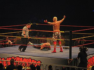 Jon Heidenreich - Heidenreich after defeating Brutus Beefcake during the Hulkmania Tour in 2009.