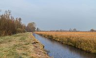 Herfstwandeling door natuurreservaat It Wikelslân 05.jpg
