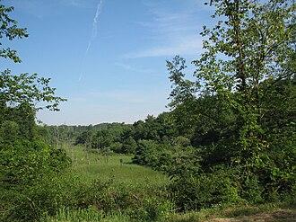 Hanover Township, Washington County, Pennsylvania - Hillman State Park also known at Bavington Game Lands